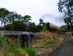 The Bellarine Rail Trail runs alongside a working steam line between Drysdale and Queenscliffe. Photo: Helen Cronin