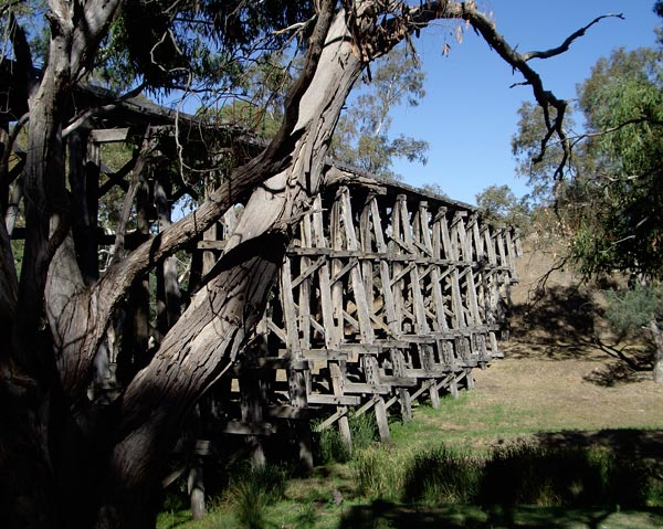 The trestle bridge at Pyalong