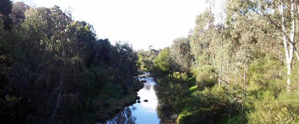 View of Merri Creek from a bridge