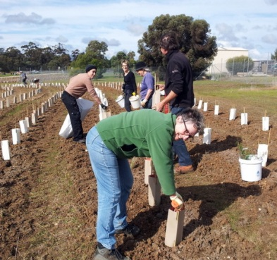 Community and Friends members planting trees.