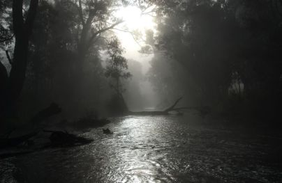 Campaspe River at Axedale. Photo: Les Lewis