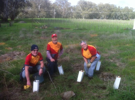 Friends of Bendigo-Kilmore Rail Trail member Peter Hill, Mal Ward and Judy Hill planting trees at Campaspe River Axedale. 31 July 2016