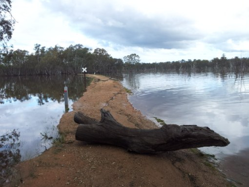 Water receeds from a flooded O'Keefe Rail Trail. 11 Oct 2016. Photo: Garry Long
