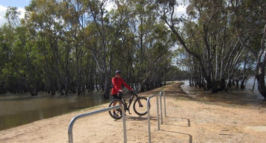 Water laps the O'Keefe Rail Trail crossing of Lake Eppalock. 6 Nov 2016